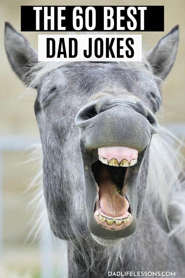 60 Best Dad Jokes