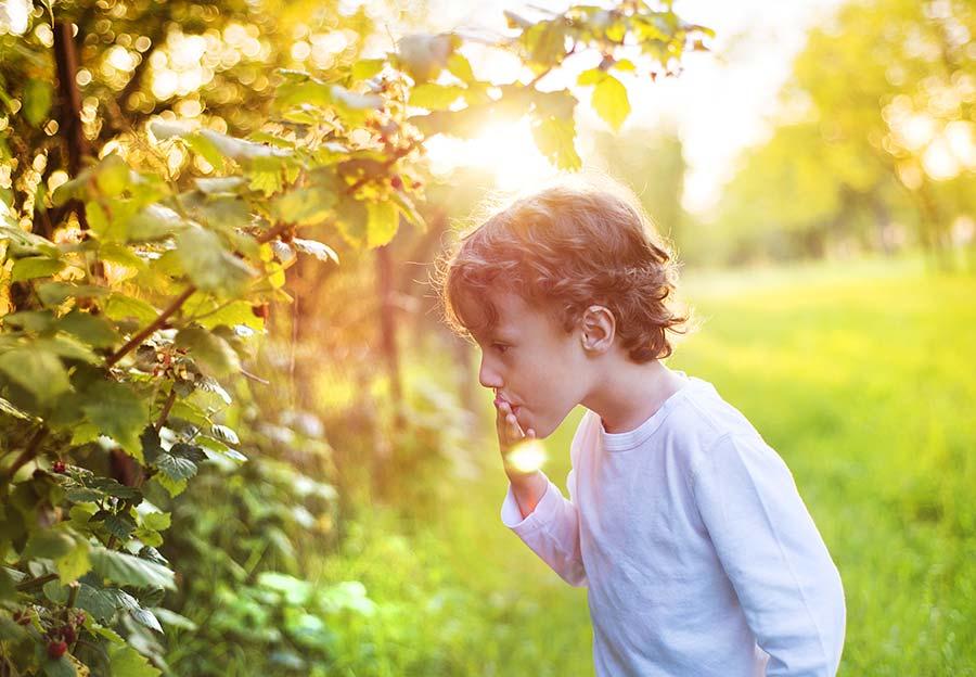 son eating berries