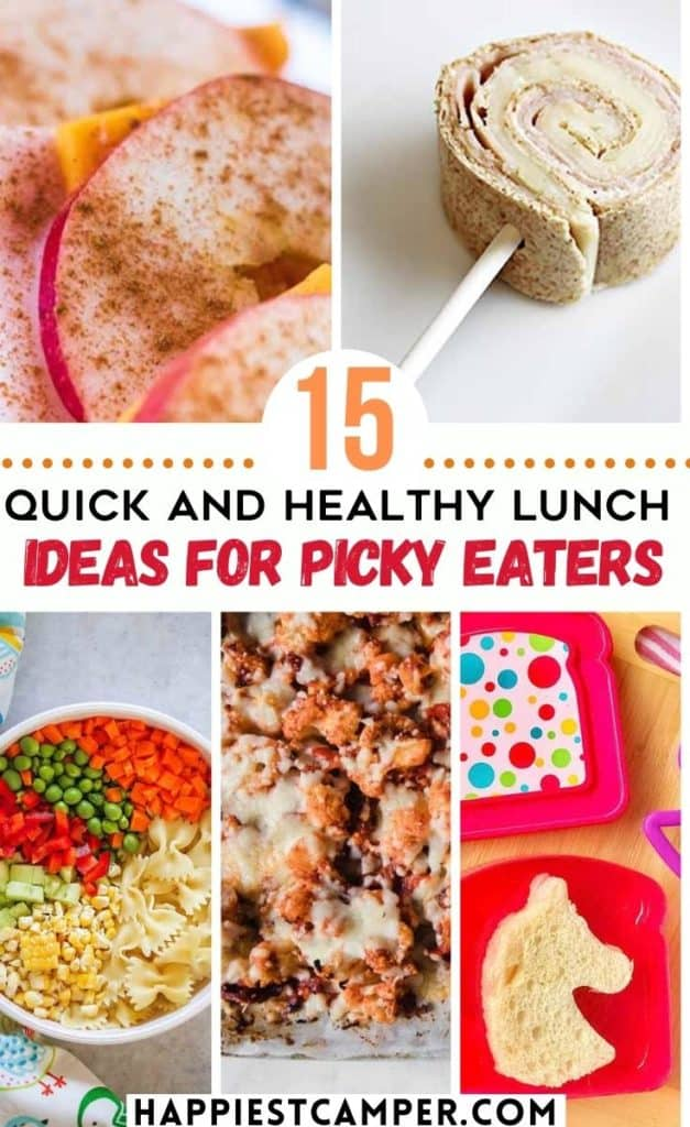 15 Quick and Healthy Lunch Ideas For Picky Eaters