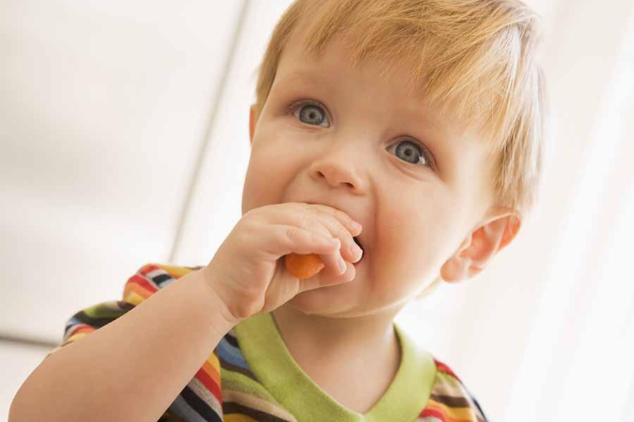hummus toddler snack